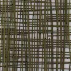 Verde Mini Bamboo Weave